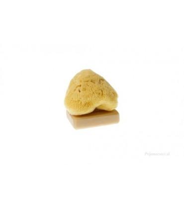 Morská kozmetická hubka na pleť
