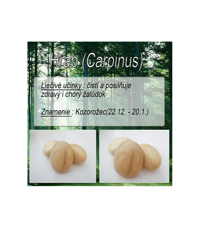 dreveny-kamen-na-akupresuru-hrab-znamenie-kozorozec