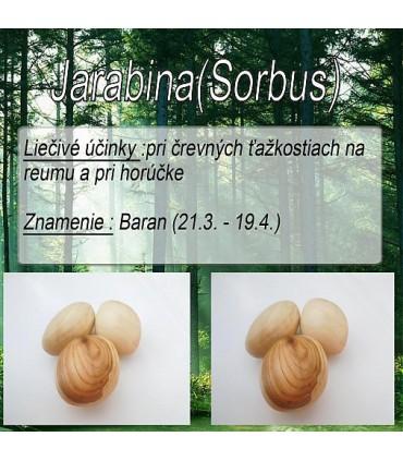 dreveny-kamen-na-akupresuru-jarabina-znamenie-baran