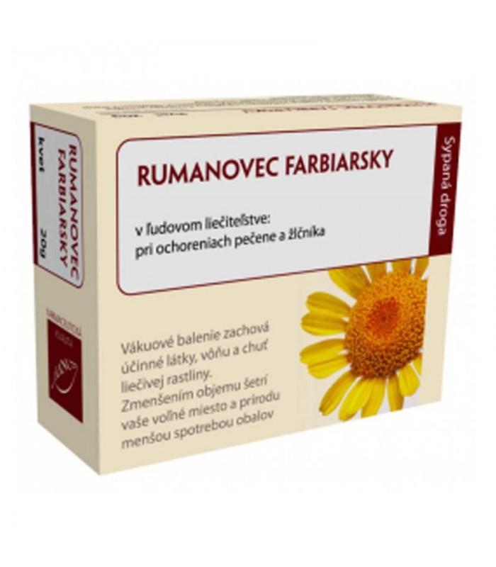 rumanovec-ruman-farbiarsky-kvet