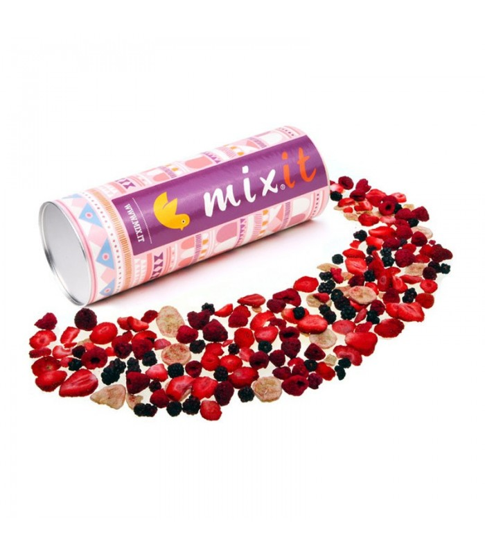 mixit-chrumkave-ovocie-90g