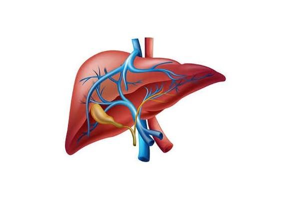 Liečba na ochorenie žlčníka a pečene