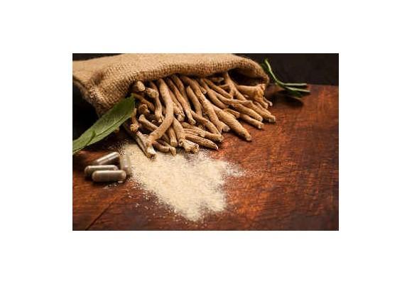 Ajurvédske extrakty - Ashwagandha (ašvaganda)